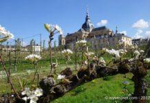 Découvrez le Potager du Roi à Versailles !