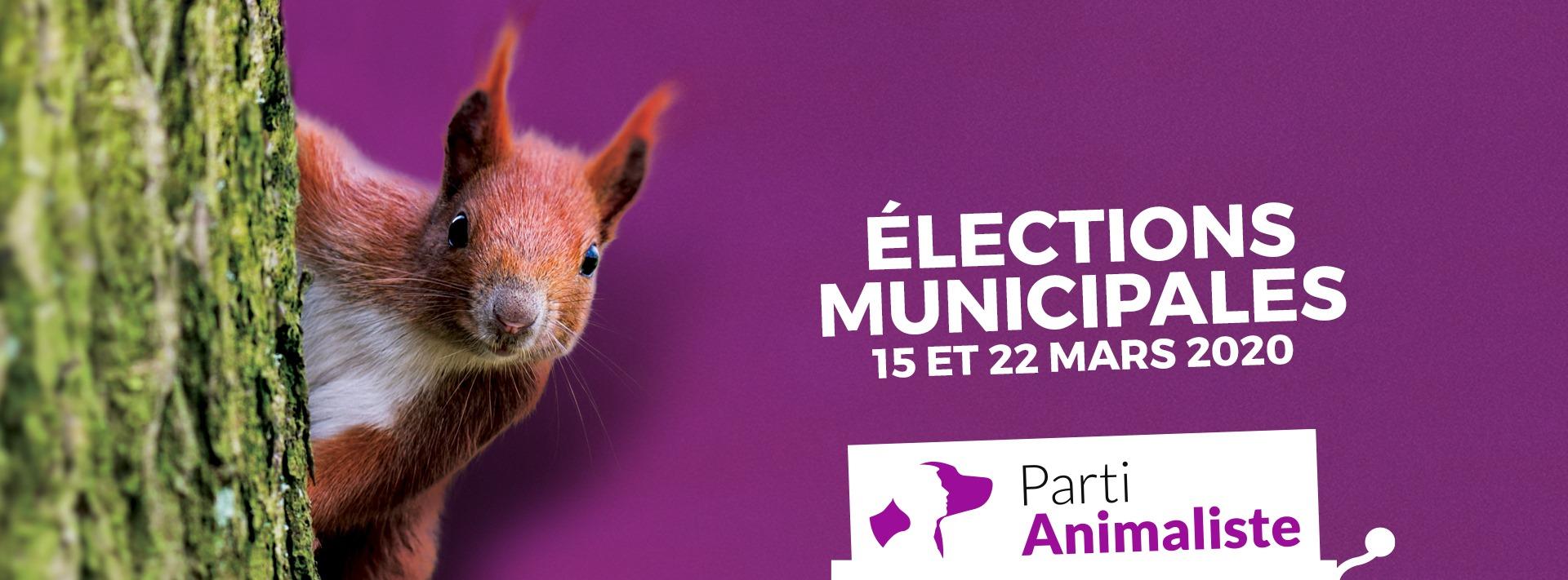 Découvrez les listes du Parti animaliste aux élections municipales de 2020